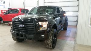Ford F-150 2016 (2)